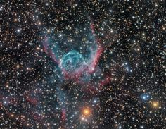 Thor's Helmet Nebula (NGC 2359) in the constellation of Canis Major. Credit and copyright: Rolf Wahl Olsen.