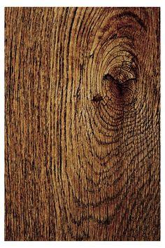 Tree Bark // Wall Art