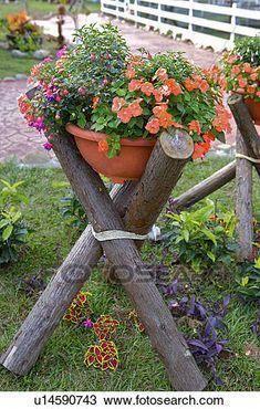 Flowers canned laying on wooden shelf in garden Stock Photography - Dingus Mcklingus - Garten - Blumen Garden Yard Ideas, Garden Crafts, Garden Planters, Garden Projects, Diy Garden, Garden Soil, Wooden Garden, Succulents Garden, Diy Projects
