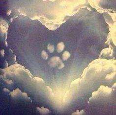 Paw print on my heart ❤️