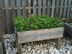 Raised Garden Beds with Legs!! Perfect!
