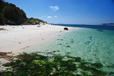 Island paradise at St Martins, Isles of Scilly. Photo by Matt B. Places To Visit Uk, Places To Go, Tresco Abbey Gardens, Scilly Island, British Holidays, Holidays In Cornwall, Cornwall England, Cool Landscapes, Culture Travel
