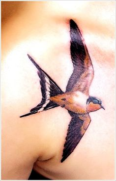 Swallow Tattoos Ideas: Swallow Tattoo Designs On Chest ~ heledis.com Tattoo Ideas Inspiration