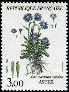 Show Us Your Beautiful Flowers on Stamps! - Stamp Community Forum - Page 16 Timbre Collection, Postage Stamp Art, Going Postal, Photocollage, Love Stamps, Flower Stamp, Vintage Stamps, Little Flowers, Aesthetic Stickers