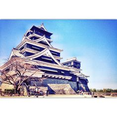 Bye bye Kumamoto #kumamoto #castle #view #behind #blue #sky #peace #late #afternoon #beautiful #city # nature #natural #creative #art #kyushu #japan #picoftheday #photooftheday #rest #slowlife #relax #enjoy #love #travel by m_tanjin