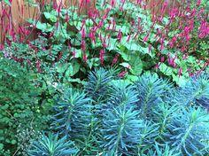 LOOSvanVLIET- Private garden Private Garden, Gardens, Plants, Outdoor Gardens, Plant, Garden, House Gardens, Planets