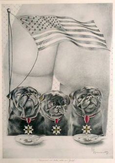 Three  pugs in front of an butt and the American Flag