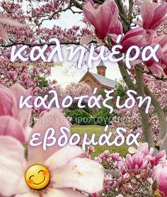 Greek Quotes, Good Morning, Anna, Buen Dia, Bonjour, Good Morning Wishes