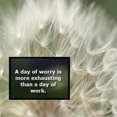 A day of worry is more exhausting than a day of work. Love Life, Life Is Good, Stop Worrying, Life Thoughts, Meaningful Words, Change The World, Make You Smile, Beautiful Words, No Worries