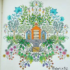 #johannabasford #secretgarden #colouringbook #coloringbook #colouringbooks #colouringbookforadults#kolorowankidladorosłych