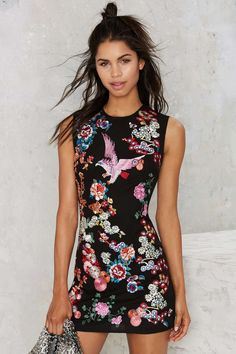 at nasty gal take flight embroidered shift dress