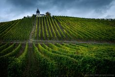 ***Vineyard and Chapel (Mosel, Germany) by Marc Colette / 500px