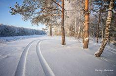 Зима на канале имени Москвы.(43)