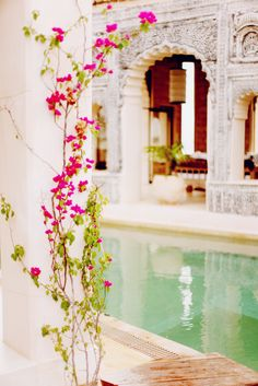 This would be my dream casa bohemia's  courtyard  reflecting pool.