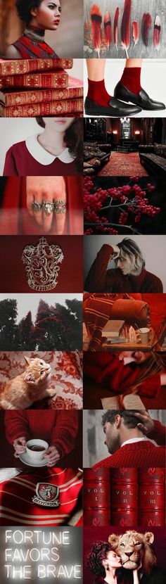 GRYFFINDOR // HOUSE OF THE BRAVE, THE CLEVER ✧ NOTABLE NAMES: HARRY POTTER, ALBUS DUMBLEDORE