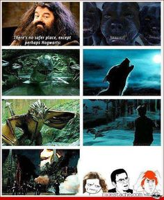 Harry Potter <<< therefore, the wizarding world seems more than a little bit dodgy :)