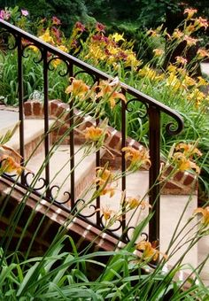 Jozef Custom Ironworks | Iron, Bronze, Curved Stair Railings, Spirals, Gates, Bronze exterior railing in dark patina finish is a beautiful addition to this colorful garden. Virginia 2003.