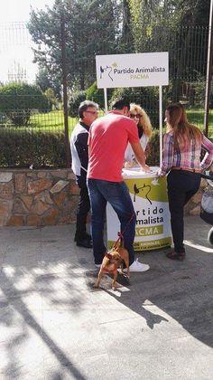 El Partido Animalista recoge firmas para presentarse a las elecciones generales del 20D