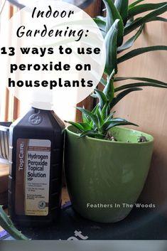 Benefits Of Hydrogen Peroxide On Houseplants Hydrogen