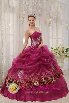 96a9b0a764 Ica Peru Popular Burgundy Quinceanera Sweetheart Organza and Leopard or  zebra Appliques Ball Gown Dress Style