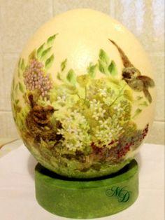 Birds ostrich-egg