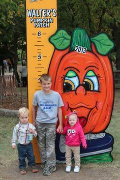 Walter's Pumpkin Patch ~ Burns, Kansas - #JustPlumCrazy