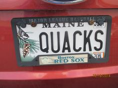 """QUACKS (Not sure if there are two """"quack doctors"""" that own this, or if someone owns some ducks.)"""