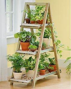 Organiza tus plantas de interior con esta escalera de mano.