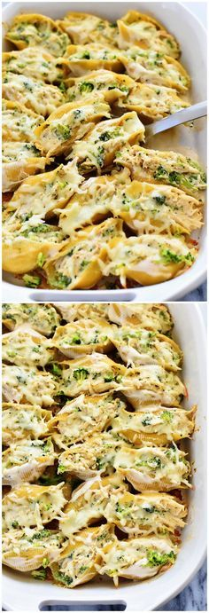 Chicken & Broccoli Alfredo Stuffed Shells – Tasty Food Collection