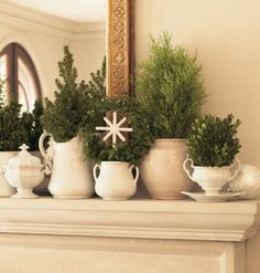 make faux topiary trees out of the ends of spruce and cedar branches for dining room mantel.