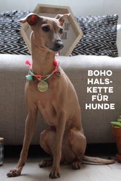 Boho Halskette für Hunde und Armband für das Frauchen.