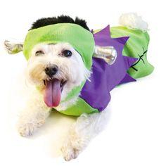 Frankenstein Dog Halloween Costume