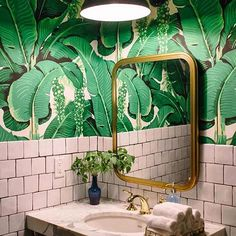 Being fans of all things jungle we couldn't resist this cloakroom #repost @turnerpocock via @designsponge. . . . . #junglefever #jungle #wallpaper #tiles #marble #reedharristiles #London reading #interiordesign #cloakroom #designer #architect #green #interiorstyling #interiors #interiorinspo #inspo #decor #decoration #home #homedecor