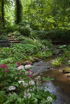 Lovely landscaping by a stream..