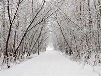 paisajes invierno