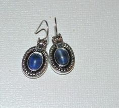 LIZ CLAIBORNE LC Silver Tone Dangle Modern Blue Glass Rope Boarder Earrings D45