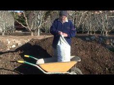 cultivo espárragos verdes abonado invierno Huerto Urbano  Luis Servia