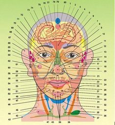 Face acupuncture reflexology health problem on your fa… - Chiropractic Therapy Massage Tools, Massage Therapy, Alternative Health, Alternative Medicine, Ayurveda, Ear Reflexology, Chiropractic Therapy, Face Mapping, Muscle Anatomy