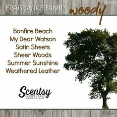 Spring/Summer 2017 - Scent type groups... http://phillipsac.scentsy.us