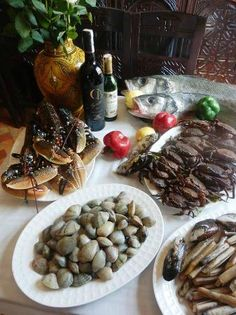 Zahra's Grill, Essaouira: See 285 unbiased reviews of Zahra's Grill, rated 4.5 of 5 on TripAdvisor and ranked #2 of 228 restaurants in Essaouira.