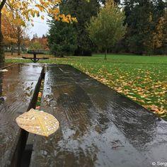October 30 2016; WA USA. Штат Вашингтон США; 30.10.2016. http://ift.tt/2eJPDiS