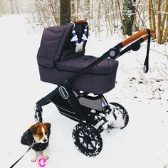 Me, Mum and my little best buddy took a walk through fab winter wonderland! . 📷 @eliasochjohanna . #emmaljunga #nxt90 #madeinsweden #realpramsforreallife #gravid #pregnant #schwanger #embarazada #mumtobe #dadtobe #parentstobe #stroller #barnevogn #barnvagn #kinderwagen #buggy
