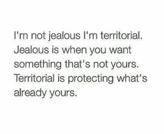 This is perfect. I'm not jealous. I'm just territorial. Touch whats mine, i'll show no mercy Real Quotes, Mood Quotes, Quotes To Live By, Funny Quotes, Life Quotes, Random Quotes, Jealousy Quotes, Romance Quotes, Bitch Quotes