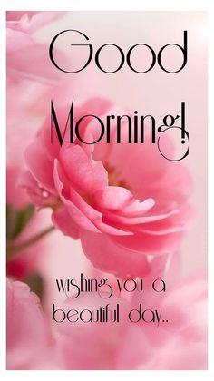 Gud Morning Pics, Good Morning Tuesday, Good Morning Roses, Good Morning Picture, Good Morning Cards, Good Morning Texts, Good Morning Greetings, Morning Pictures, Good Morning Happy