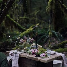 A picnic in the forest by Christiann Koepke. More soon on ChristiannKoepke.com!