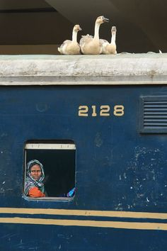 Amazing rail journey Photo by Shamsul Suza -- National Geographic Your Shot