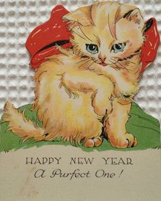 Happy New Year - A Purfect One!