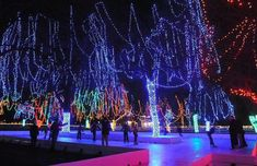 12 Best Christmas Light Displays In Minnesota 2016