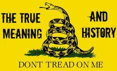 "Gadsden Flag Loving Internet ""Patriot"" Gets Epically Schooled In American History"