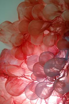 Playing with films and layers of light - Lisa Kellner. They remind me of jellyfish.